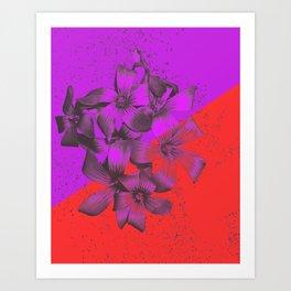 Solaris #2 Art Print
