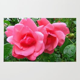 roses after rain Rug