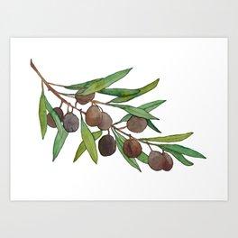Olive leaf Art Print