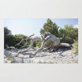 Driftwood Rug