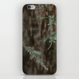 The Pine  iPhone Skin