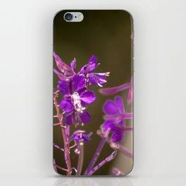 Concept flora : Lythracaee iPhone Skin