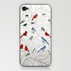 Winter Birds iPhone & iPod Skin