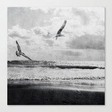 Seascape Freedom Canvas Print