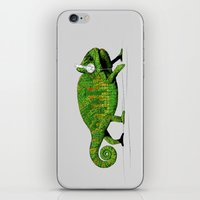 chameleon iPhone & iPod Skins featuring Chameleon by Badamg