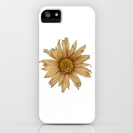 No More Sunshine iPhone Case