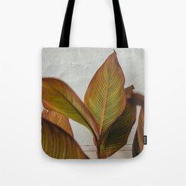 Green Orange Leaves | Puglia Italy Europe | Fine Art Travel Photography | grey colored art print  Tote Bag