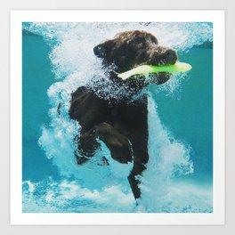 Dog Aquatic Art Print