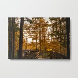 Cypress Trees and Bridge in Mississippi Metal Print