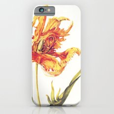 V. Vintage Flowers Botanical Print by Anna Maria Sibylla Merian - Parrot Tulip Slim Case iPhone 6s