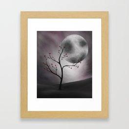Midnight Peach Framed Art Print