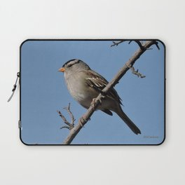 A White-Crowned Sparrow Eyes the Botanic Garden Laptop Sleeve