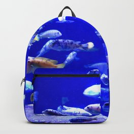 Fish Tank Backpack