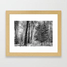 Winteress Framed Art Print