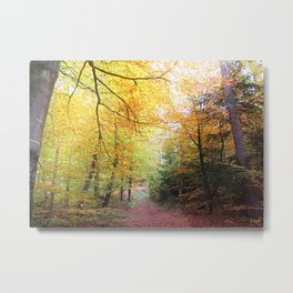 MM - Autumnally forest path Metal Print