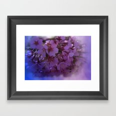 Prunus spinosa on texture - the signs of spring Framed Art Print