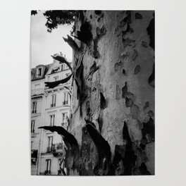 Paris in the fall Poster