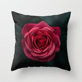 Flower Photography by aaron staes Throw Pillow