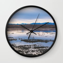 Flamingoes on El Calafate, Patagonia, Argentina 2 Wall Clock