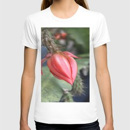 Beautiful Cactus Bud T-shirt
