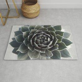 Succulent Photography Nature Plant Green Cactus Floral Art Rug