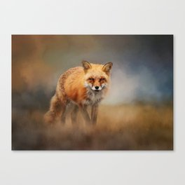 Red Fox In Foggy Landscape - Wildlife Photography Canvas Print
