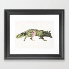 The Curious Fox Framed Art Print