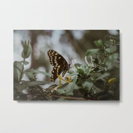 in the quiet moments Metal Print