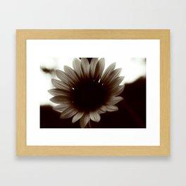 Dark Sun-Flower Framed Art Print
