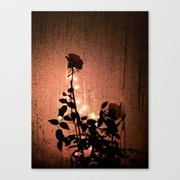 Rose Silhouette  Canvas Print