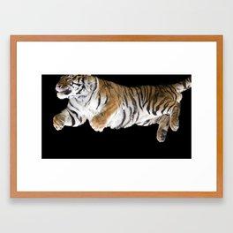 Leaping Tiger Framed Art Print