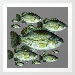 SCHOOL OF GREEN FISH  IN GREY Art Print
