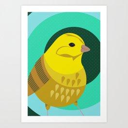 Yellowhammer Art Print