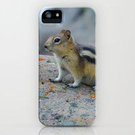 Golden mantled ground squirrel in Jasper National Park   Canada iPhone Case