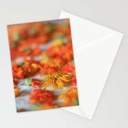 in the process of d(r)ying Stationery Cards