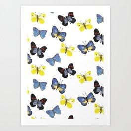 Butterfly Mania Art Print