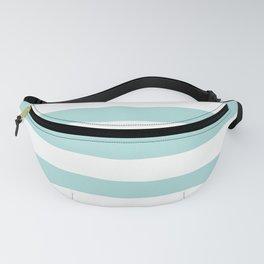 Aqua Blue and White Stripes Fanny Pack