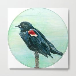 Red-Winged Blackbird Circle Painting Metal Print