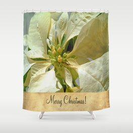 Pale Yellow Poinsettia 1 Merry Christmas S2F1 Shower Curtain
