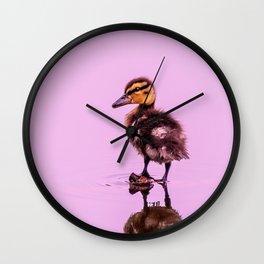 Hello World - Mallard Duckling Wall Clock
