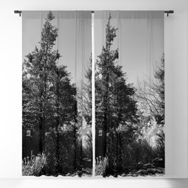 The Trees - Moody n' Grey Blackout Curtain