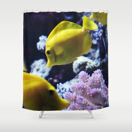 Under the Sea Swimming Yellow Fish Coral Reef Sea Anemone Underwater Photography Wall Art Print Shower Curtain