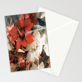 Street /416/ Floral Stationery Cards