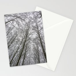 Snow Mountain Winter Forest VI - Nature Photography Stationery Cards