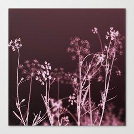 Elegant Burgundy Botanical Floral Canvas Print