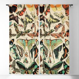 Adolphe Millot 1800s Vintage Butterfly Blackout Curtain
