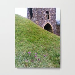 Thistles in the Castle Metal Print