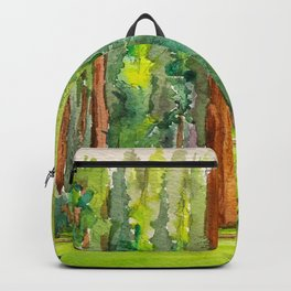 Sequoia National Park Backpack