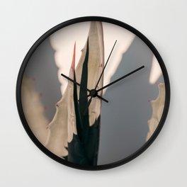 Agave Shadow Wall Clock