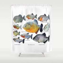 Piranha family Shower Curtain